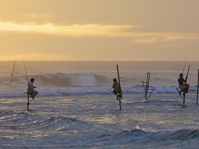 Stilt Fishermen at Weligama, South Coast, Sri Lanka, Asia-Peter Barritt-Photographic Print