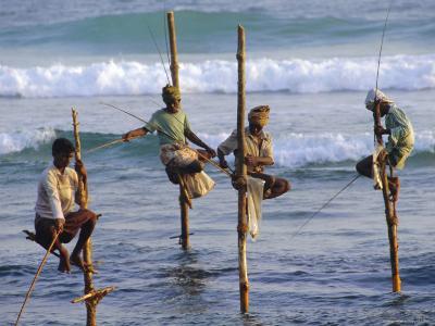 Stilt Fishermen, Weligama, Sri Lanka, Asia-Upperhall Ltd-Photographic Print