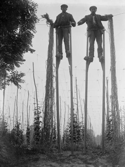 Stilt Walkers--Photographic Print