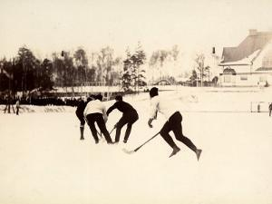 Stockhom Winter Games. Ice Hockey Match of the Swedish and Finnish Teams