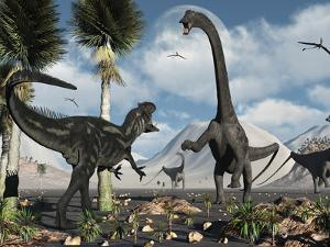 A Carnivorous Allosaurus Confronts a Giant Diplodocus Herbivore During the Jurassic Period on Earth by Stocktrek Images