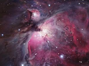 A Close up of the Orion Nebula by Stocktrek Images