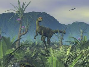 A Colorful Adult Male Dilophosaurus Explores a Hilltop by Stocktrek Images