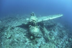 A Japanese Jake Seaplane on the Seafloor of Palau's Lagoon by Stocktrek Images