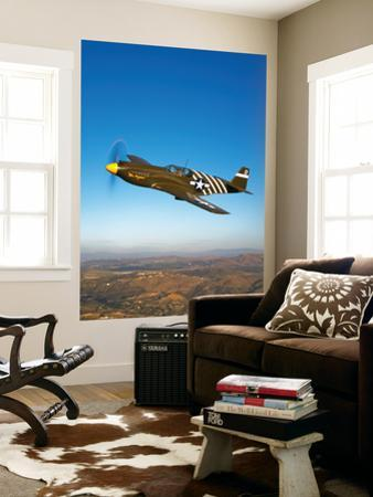 A P-51A Mustang in Flight