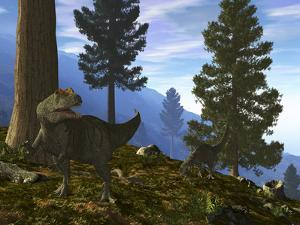 A Pair of Allosaurus Search for a Meal Along a Mountainside Forest by Stocktrek Images