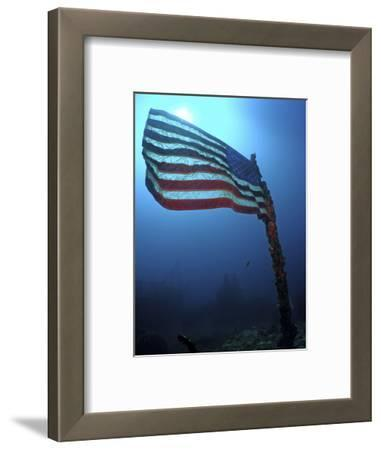American Flag on a Sunken Ship in Key Largo, Florida