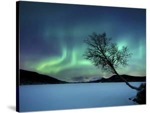 Aurora Borealis over Sandvannet Lake in Troms County, Norway by Stocktrek Images