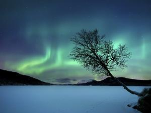 Aurora Borealis over Sandvannet Lake in Troms County, Norway by Stocktrek Images