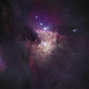 Center of the Orion Nebula (The Trapezium Cluster) by Stocktrek Images