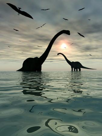 Diplodocus Dinosaurs Bathe in a Large Body of Water by Stocktrek Images