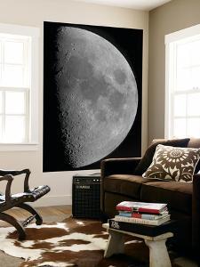 Half-Moon by Stocktrek Images