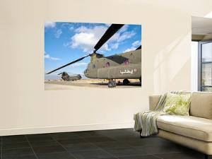 Italian Army Ch-47C Chinook Helicopters at Forward Operating Base Herat by Stocktrek Images