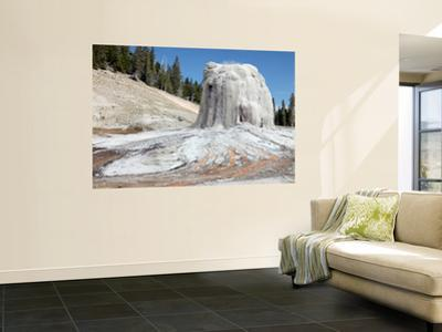 Beautiful Geyser wall murals artwork for sale Posters and Prints