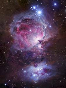 M42, the Orion Nebula (Top), and NGC 1977, a Reflection Nebula (Bottom) by Stocktrek Images