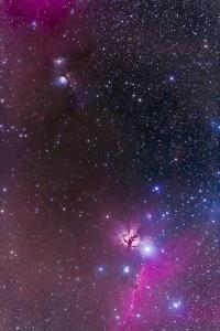 Messier 78 and Horsehead Nebula in Orion by Stocktrek Images