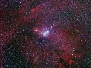 NGC 2264, the Cone Nebula Region by Stocktrek Images