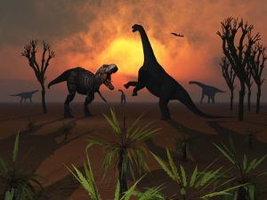 T. Rex Confronts a Group of Camarasaurus Dinosaurs by Stocktrek Images