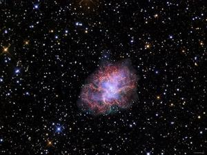 The Crab Nebula by Stocktrek Images