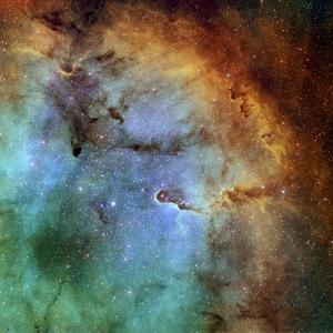 The Elephant Trunk Nebula by Stocktrek Images