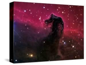 The Horsehead Nebula by Stocktrek Images