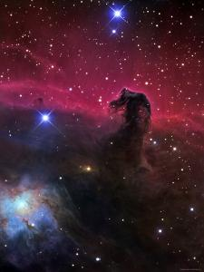 The Horsehead Nebula by Stocktrek Images