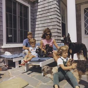 The Kennedy Family with Dogs During a Weekend Getaway by Stocktrek Images