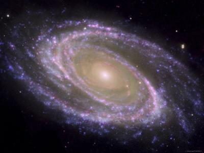 The Spiral Galaxy Known as Messier 81 by Stocktrek Images