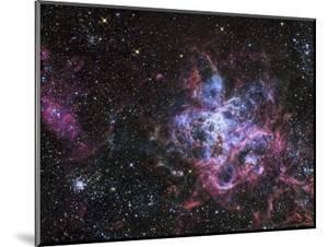 The Tarantula Nebula by Stocktrek Images