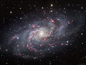 The Triangulum Galaxy by Stocktrek Images