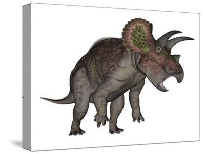 Triceratops Dinosaur Standing Up