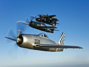 Two Grumman F8F Bearcats and Two F7F Tigercats Fly in Formation by Stocktrek Images