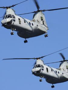 Two U.S. Marine Corps CH-46E Sea Knight Helicopters in Flight by Stocktrek Images
