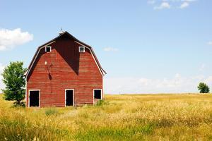 Abandoned Farm in Nebraska by StompingGirl