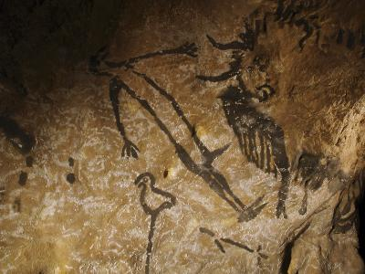 Stone-age Cave Paintings, Lascaux, France-Javier Trueba-Photographic Print