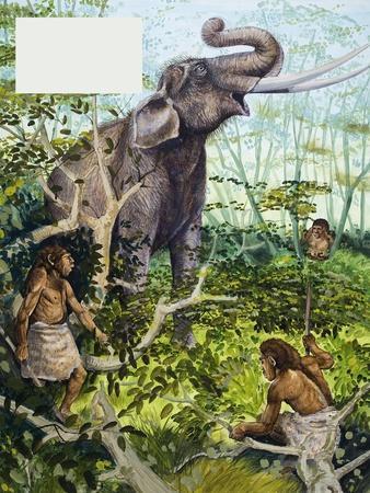https://imgc.artprintimages.com/img/print/stone-age-man-and-elephant_u-l-p54wkv0.jpg?p=0