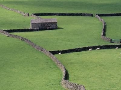 Stone Barn and Dry Stone Walls, Gunnerside, Swaledale, Yorkshire, England, United Kingdom-Jean Brooks-Photographic Print