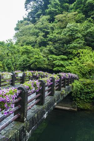 Stone Bridge with Flowers in Seogwipo-Michael-Photographic Print