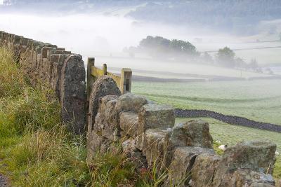 Stone Fence, Burnsall, Yorkshire Dales National Park, Yorkshire, England, United Kingdom, Europe-Miles Ertman-Photographic Print