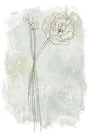 https://imgc.artprintimages.com/img/print/stone-flower-study-iii_u-l-q19zmkb0.jpg?p=0