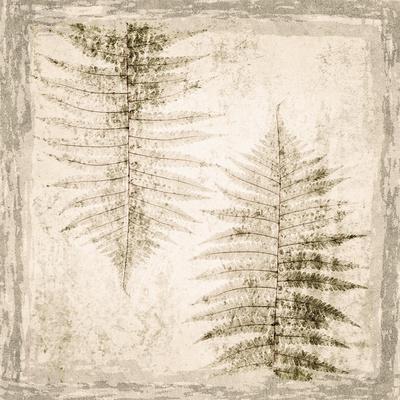 https://imgc.artprintimages.com/img/print/stone-leaf-ii_u-l-q19bh8h0.jpg?p=0