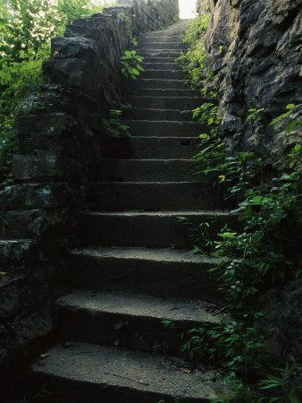 Stone Stairs Lead To The Top Of Morgans Steep In Sewanee Photographic Print  By Stephen Alvarez   Art.com