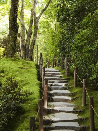 https://imgc.artprintimages.com/img/print/stone-steps-leading-through-shoyoen-garden-at-rinno-ji-temple_u-l-pd3li70.jpg?p=0