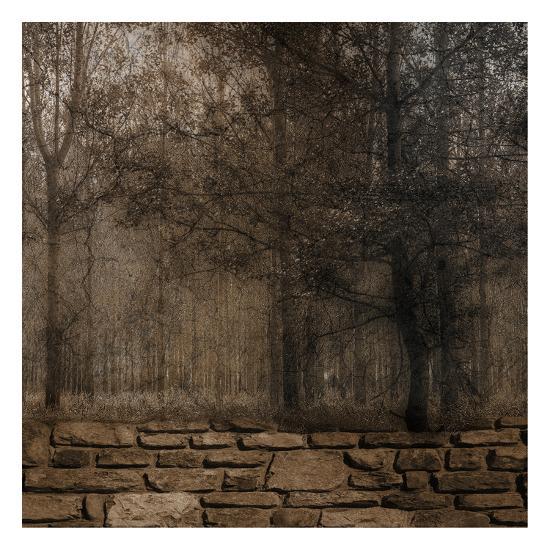 Stone Wall Landscape 2-Sheldon Lewis-Art Print