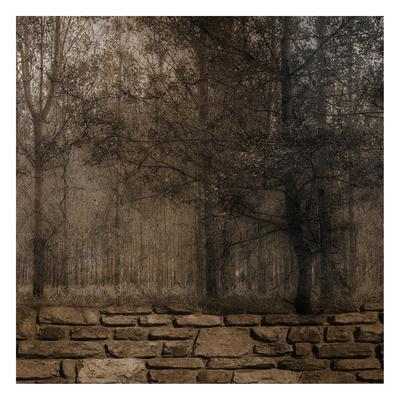 https://imgc.artprintimages.com/img/print/stone-wall-landscape-2_u-l-f90aoe0.jpg?p=0