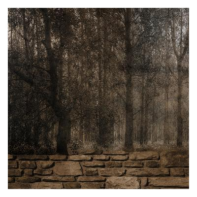 Stone Wall Landscape-Sheldon Lewis-Art Print