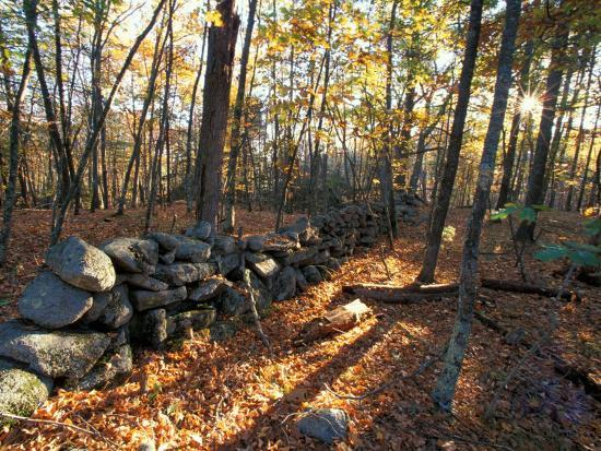 Stone Wall, Nature Conservancy Land Along Crommett Creek, New Hampshire, USA-Jerry & Marcy Monkman-Photographic Print