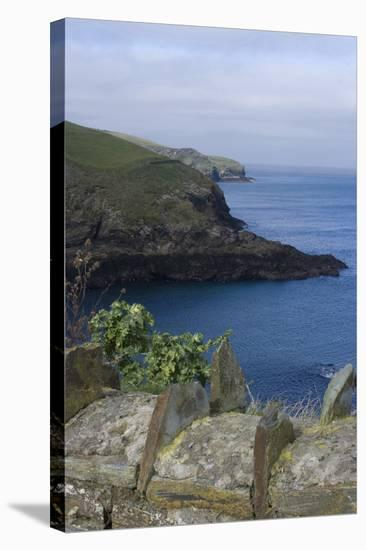 Stone Wall Overlooking the Harbour, Port Isaac, Cornwall, UK-Natalie Tepper-Stretched Canvas Print
