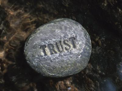 Stone with Word Trust in Water of Tranquil Stream