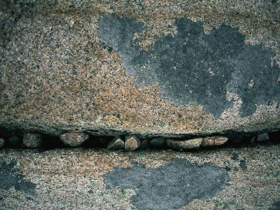 Stones Fill a Crack in a Large Rock-Amy & Al White & Petteway-Photographic Print